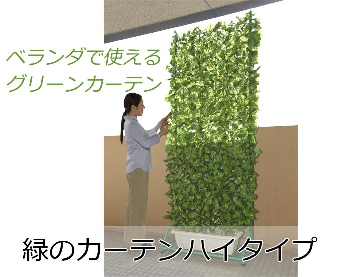 緑のカーテンハイタイプ