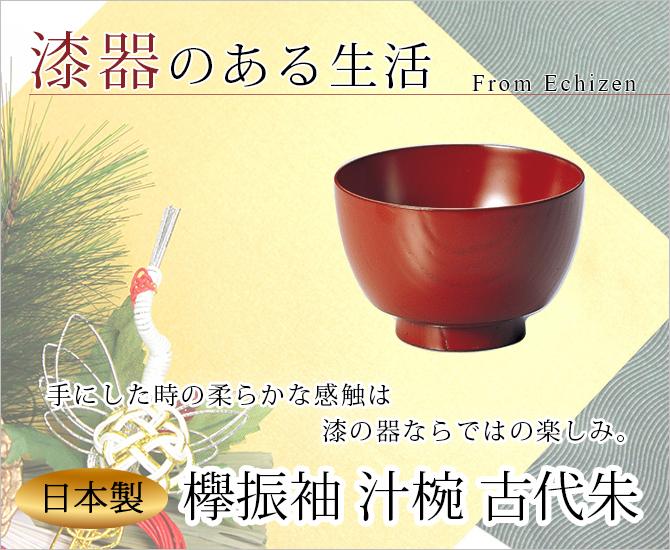欅振袖 汁椀 古代朱