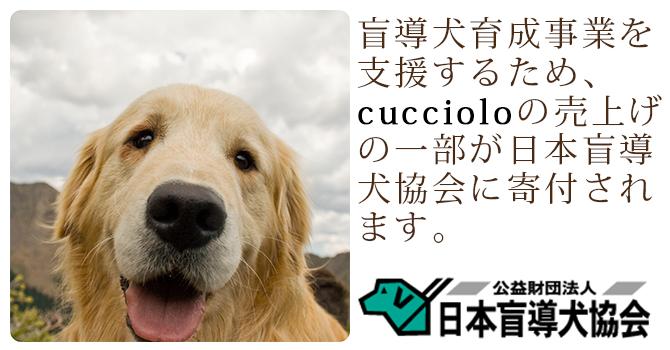 cucciolo 『labrador retriever』
