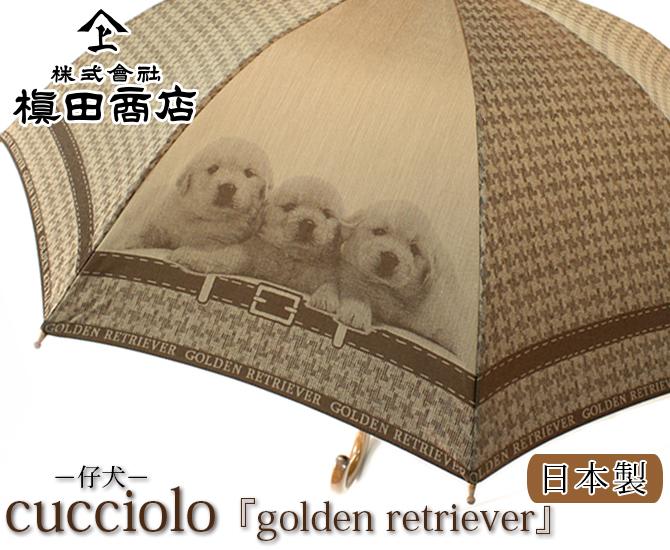 cucciolo 『golden retriever』