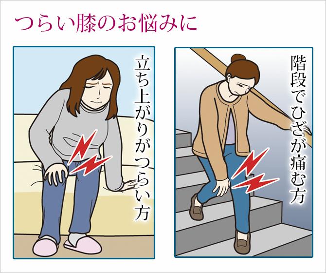 勝野式 ひざ軽ロングサポーター